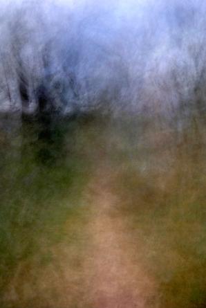 Woods07